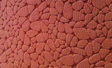 commercial_carpet_03o
